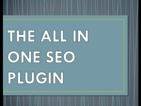 Optimizing The All in One SEO Plugin: