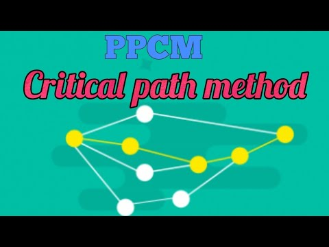 CPM and PERT network analysis, Project management techniques (P.P.C.M.)