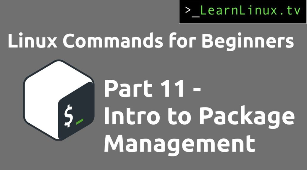 Linux Commands for Beginners 11 - Intro to Package Management on Debian-based Distributions