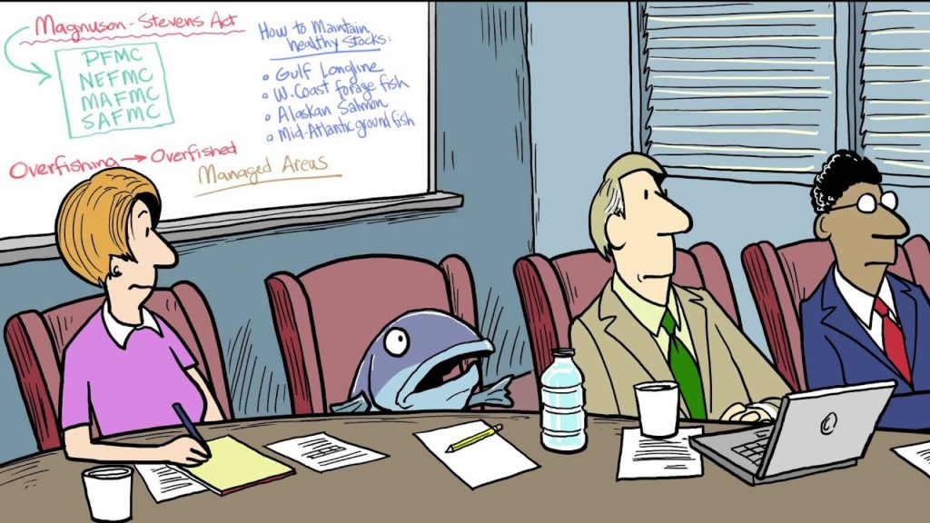 What Is U.S. Fisheries Management?|A Cartoon Crash Course